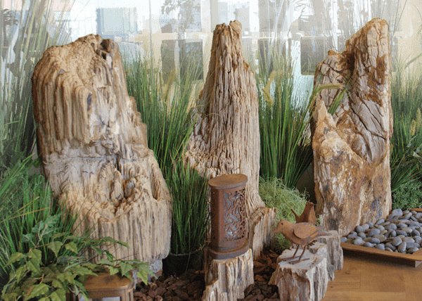 Belgi grafsteen met versteend hout den hollandsche for Boomstam decoratie