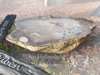 Versteend hout als grafmonument